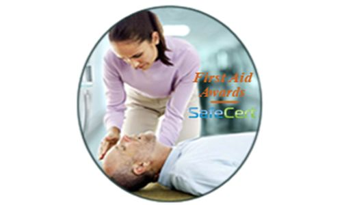 IFE First Aid Train the Trainer and Instructor Training
