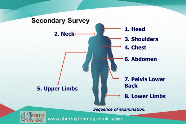 5 SecondarySurvey